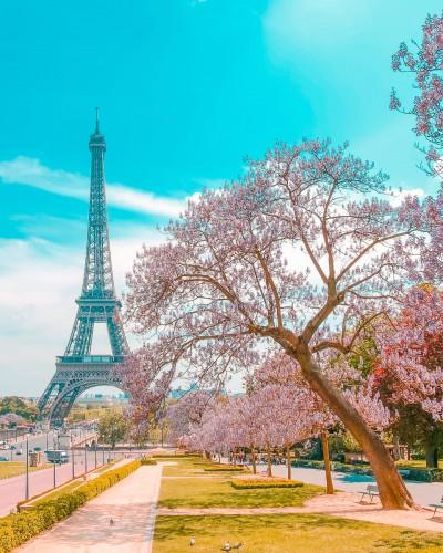 تور  فرانسه - سوییس 9 روزه