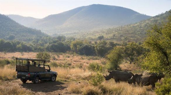 پارک ملی پیلانسبرگ آفریقای جنوبی