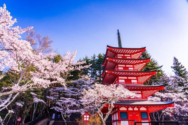 جغرافیا و آب و هوای توکیو