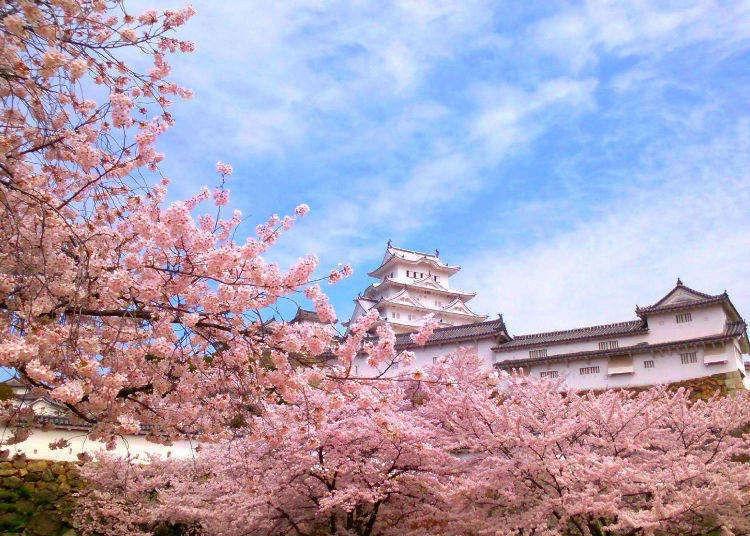 جغرافیا و آب و هوای ژاپن