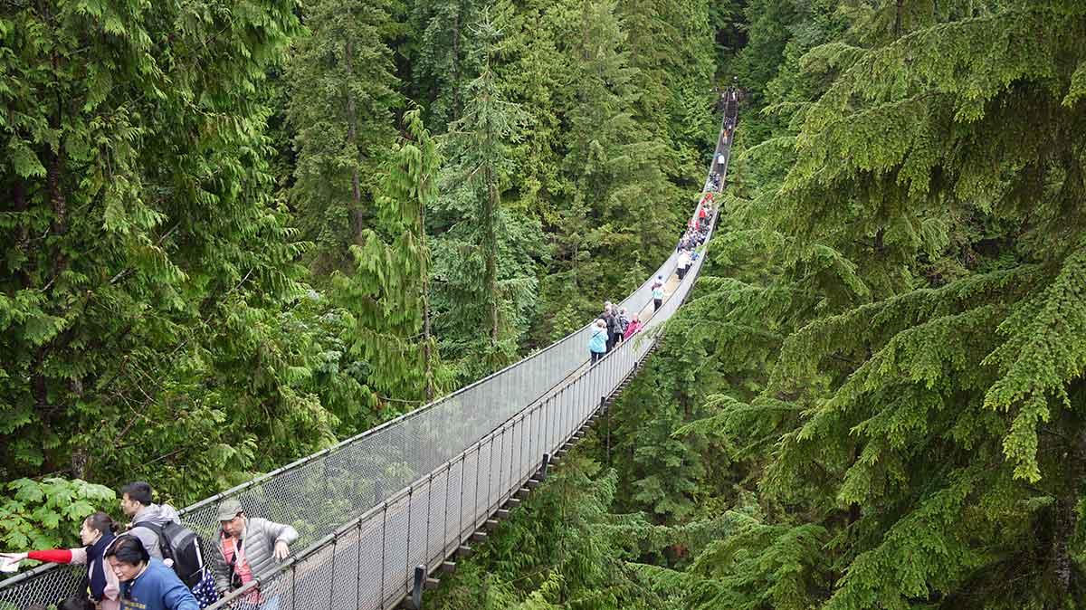 پل معلق کاپیلانو ، لذت قدم زدن بر فراز درختان