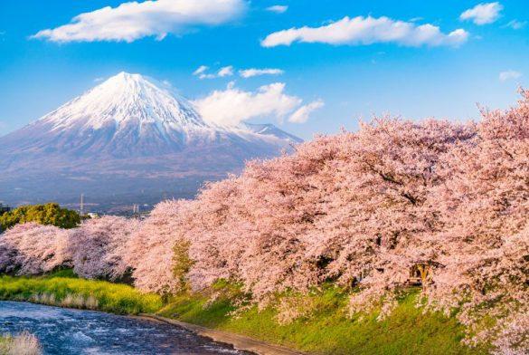 آشنایی با آب و هوای ژاپن و بهترین زمان سفر به این کشور