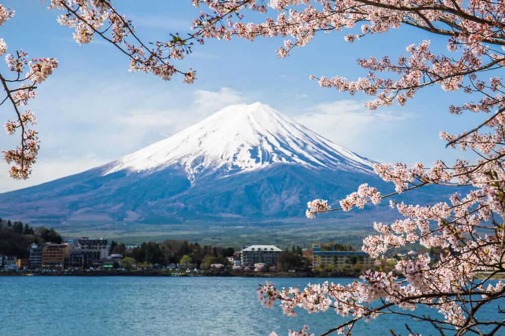 درباره کوه فوجی