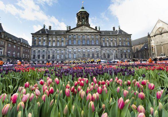 قصر سلطنتی آمستردام، نماد پادشاهی هلند