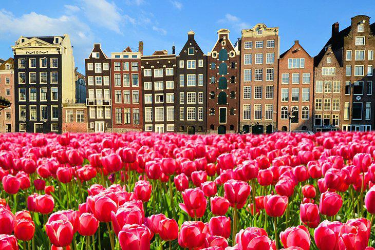 بهترین شهرهای هلند برای سفری خاطره انگیز