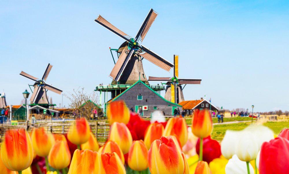 درباره آسیابهای بادی هلند