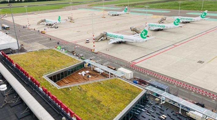 درباره فرودگاه روتردام
