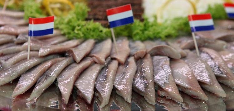 فرهنگ غذایی هلند - فرهنگ و آداب و رسوم هلند