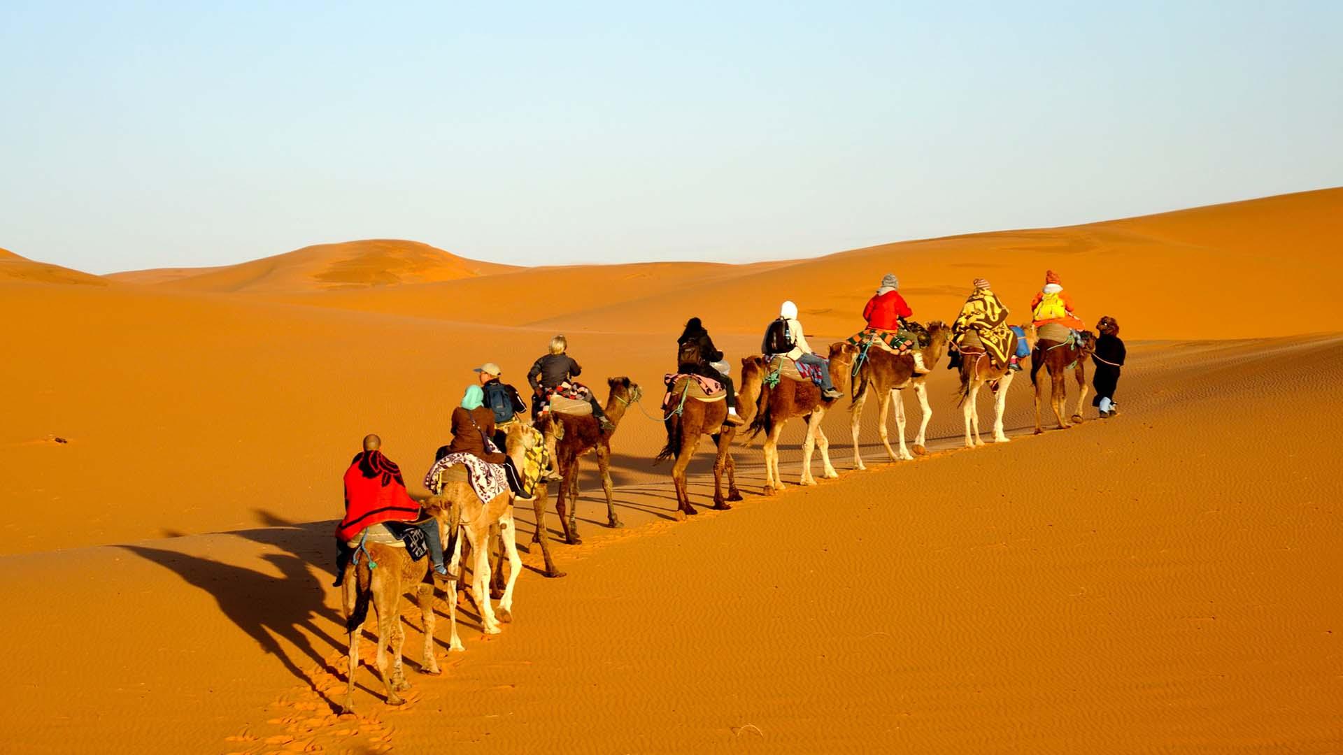 Camel Trekking In Mesr Desert